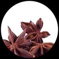 regionalco-black-box-flor-anis-especia-01