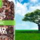 Los poderes de lo Eco y lo Orgánico