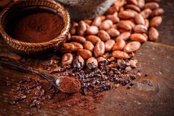 Cacao puro y ecológico